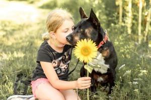 EXO - Skvělý pes milující dospělé i děti ❤ - ADOPTOVANÝ