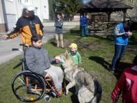 Útulok Labka pomoci nedáva psíkom len kŕmenie a pár hodín prechádzky